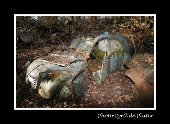 Un cimetière automobile